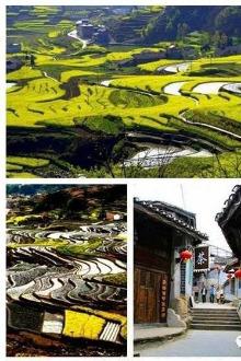 相约在青木镇,汉中油菜花盛开的季节