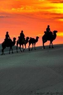 5.1自驾或者包车奈曼沙漠之旅