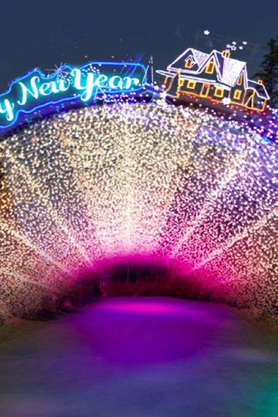 南京银杏湖乐园跨年活动83一人
