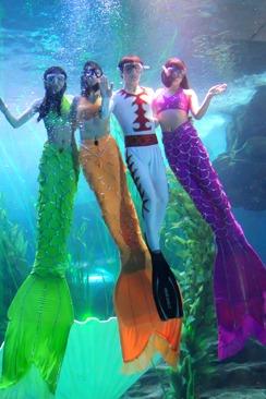 青岛海底世界+市区观光一日游