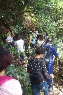 8月30日星期天八都水库摘野猕猴桃活动