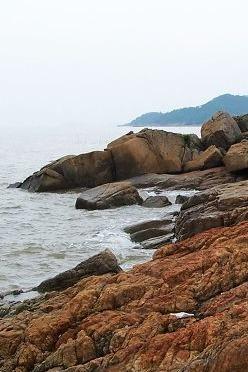 4月10日珠海[淇澳岛]红树林观鸟/环岛海岸线穿越