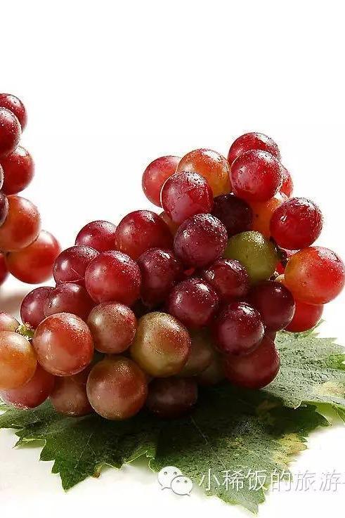 葡萄采摘季来了,还在等什么?无公害有机美味等你哟!