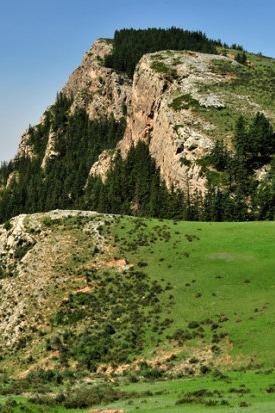 8月7日贺兰山采蘑菇,交友,登山,初级休闲徒步
