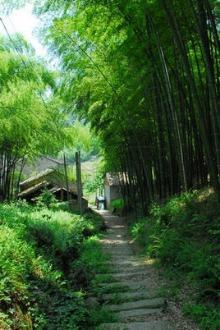 3月14日(周六)绍兴上青古道寻找大隐的足迹