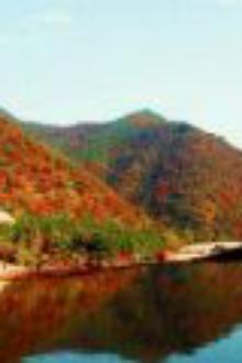 翠枫山赏红叶