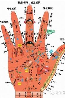1月15日至21日传统中医养生理疗师培训班火热报名中……