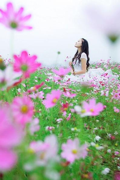 【周日休闲】6月14号黄陂木兰草原骑马野炊游