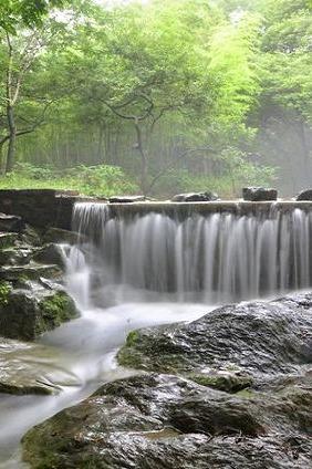 4月4-5号草原、森林公园、琅琊山、醉翁亭2天380/人
