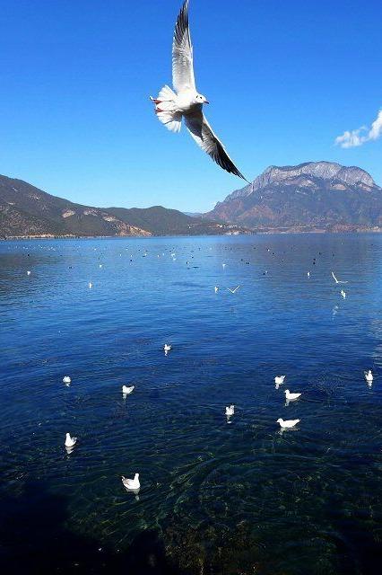一起去探寻神秘的摩梭族世界——泸沽湖