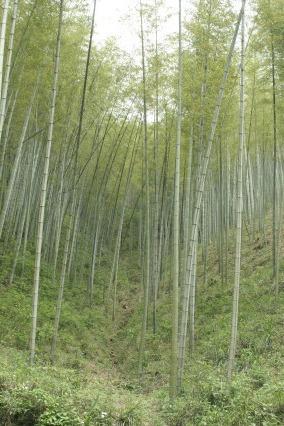 2015重装徒步七峰山