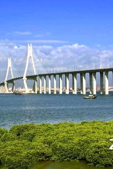 一场我们家乡的美丽城市湛江的旅行