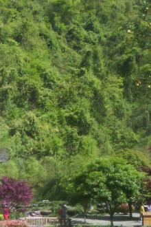 徒步观光大峡谷
