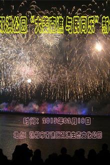 """2015年双洪公园""""大美南谯与民同乐""""新年烟花会"""