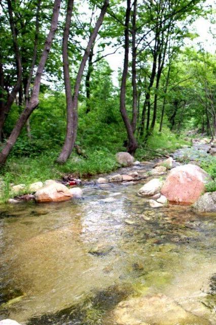 周日约伴鲁山石板河穿越飞龙瀑