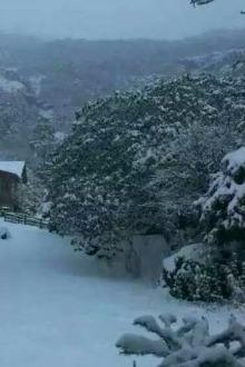 1月29日昆明轿子雪山、东川红土地五日游950元