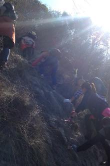 森林自然氧吧爬山群爬山活动公告