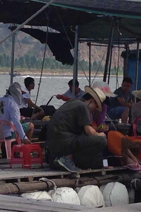 小桂鱼排海钓